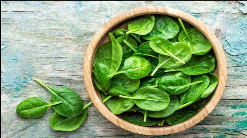 manfaat sayur bayam yang perlu diketahui